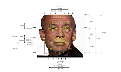 A man's face showing measurement components.